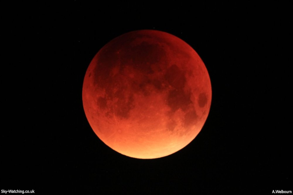 In full effect, the Blood Moon, Supermoon, total eclipse had lived up to expectations, and then some (click to enlarge) - Credit: Sky-Watching/A.Welbourn